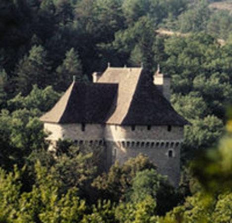 Château de Cousserans