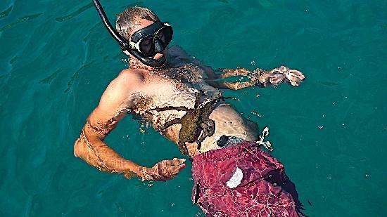 Ionian Discoveries : Jamie and the Clinging Octopus