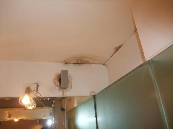 Acesite Knutsford Hotel: 楽仕酒店4