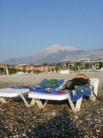 Sultan's Beach Hotel: Plage de cailloux et transats