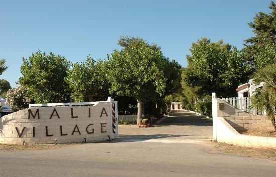 Malia Village: Ingresso