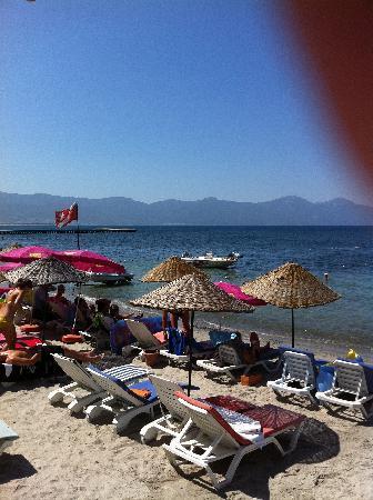 Hotel Grand Ozcelik: Beach