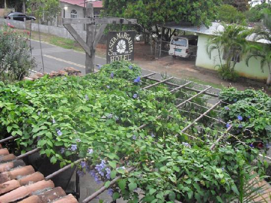 Casita Margarita: Street from the 2nd floor
