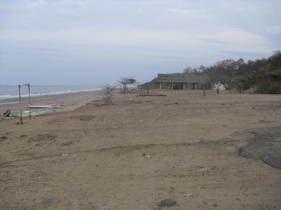 Casita Margarita: Pedasí beach