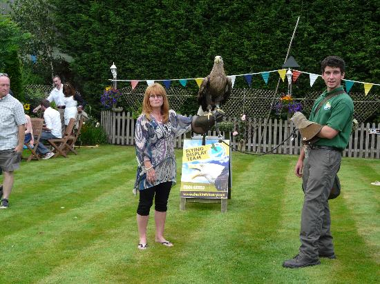 Cheshire Falconry: Ooh this is a big bird!!!!