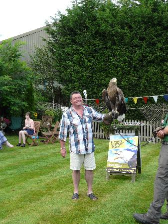 Cheshire Falconry: Having my picture taken with some bloke
