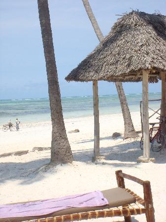 White Beach Hotel Zanzibar : spiaggia