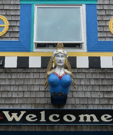 The Blue Water House: Welcome to the Lewes