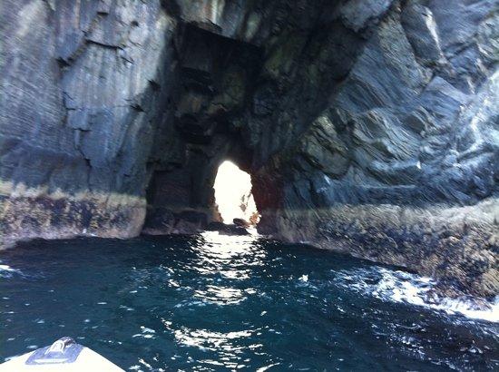 Cork Sea Safari : light at the end of the tunnel