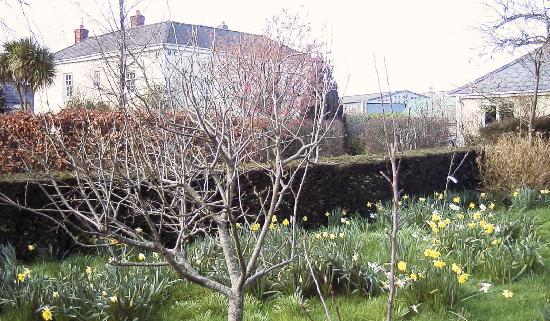 Elmfield: View from the orchard