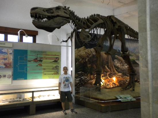 Museum Geologi: pre historic section with T-Rex replica