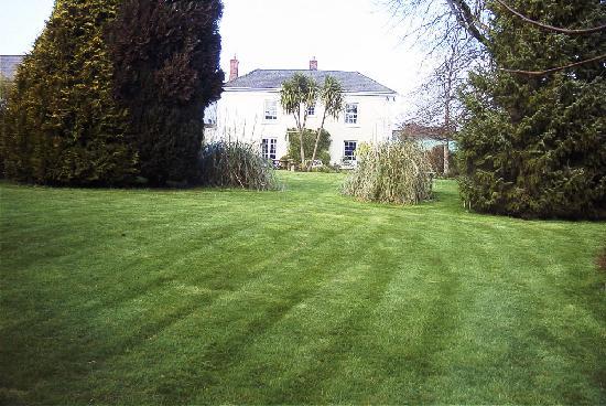 Elmfield: From the lower garden
