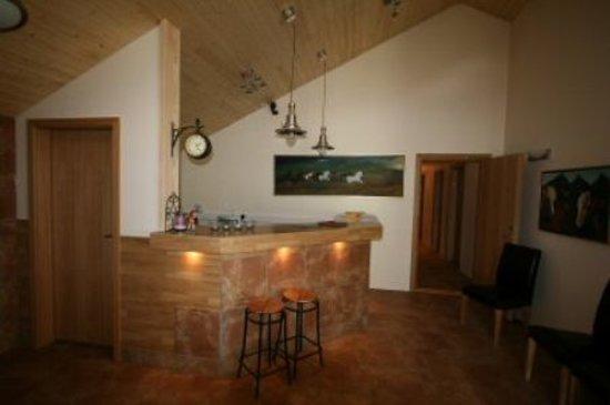 Guesthouse Vellir: lobby.