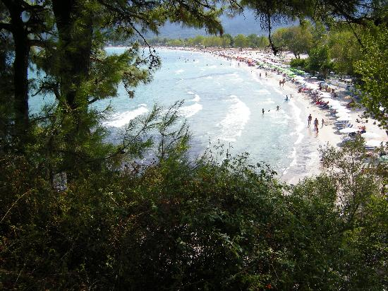 Golden Beach, Grèce : A good view of the beach and waves