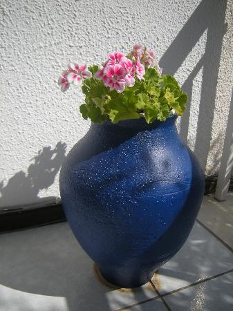 Golden Beach, Grekland: A vase of beautiful little flowers