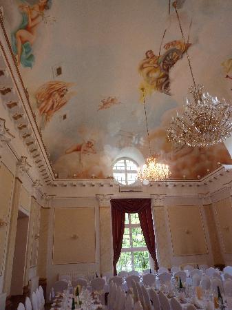 Hotel Palac Izbicko : les salles de receptions