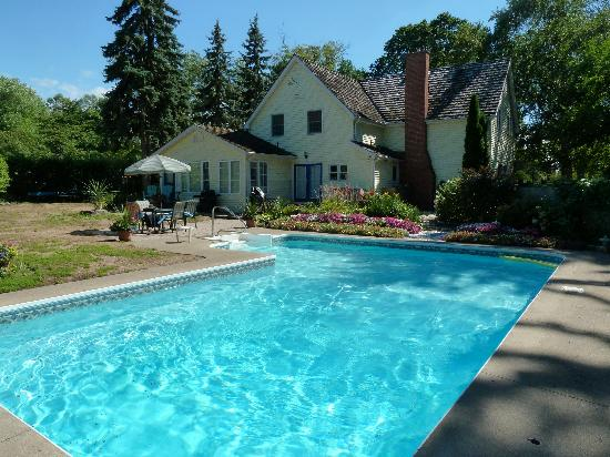 Paradise Grove: Pool