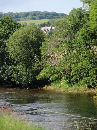 Ballyduff House: Great views of the River Nore - where people like to fish