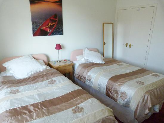 Aurora Bed and Breakfast: Twin Bed Room