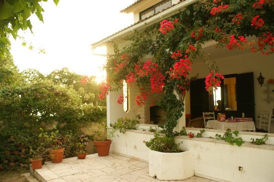 Quinta Colina Flora: The terrace with the Marigold room