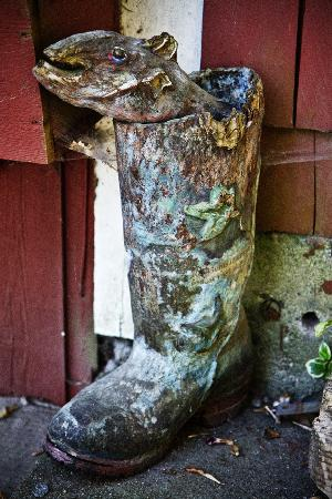 Gumboot Garden: The old gumboot