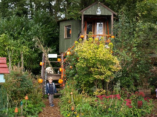 Merstham, UK: The tree house
