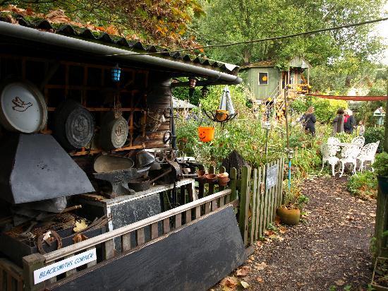 Fanny's Farm Shop: The garden
