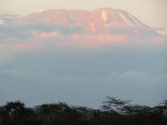 Hatari Lodge: View from room of Mt. Kilimanjaro