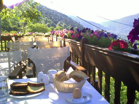 Karpenisi, Grèce : Relaxing fresh views