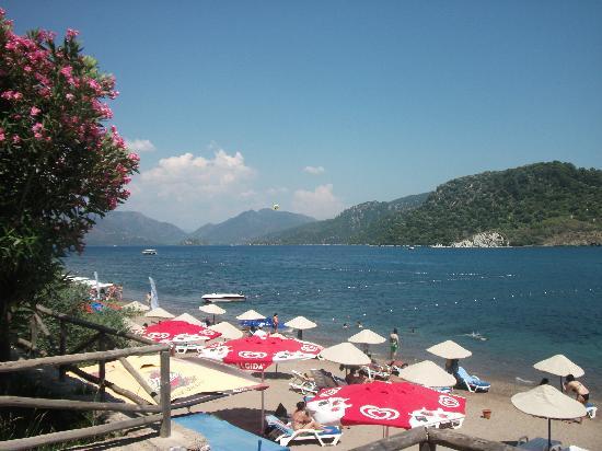 Club Kocer Apartments: view frm beach