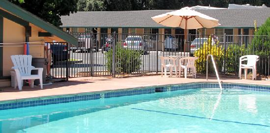 Town House Motel: Outdoor Swimming Pool