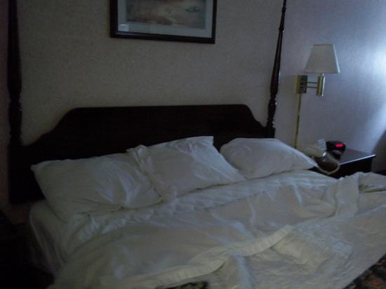 America's Best Value Inn Paducah : bed