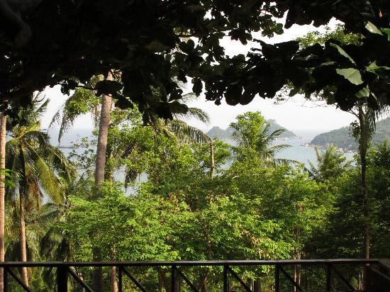 OK View Bungalows : La vue du lobby de l'hôtel.