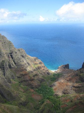 The Palmwood : Napali coast