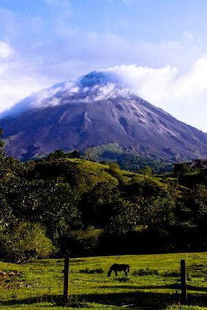 Cabinas Los Guayabos: Arenal Volcano from Cabinas los Guayabos