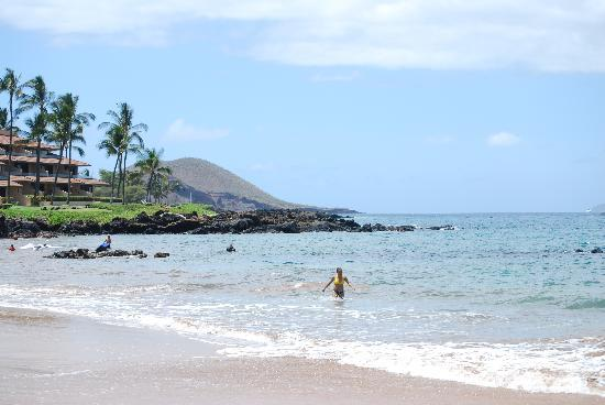 Makena Surf: Good snorkeling around rocks
