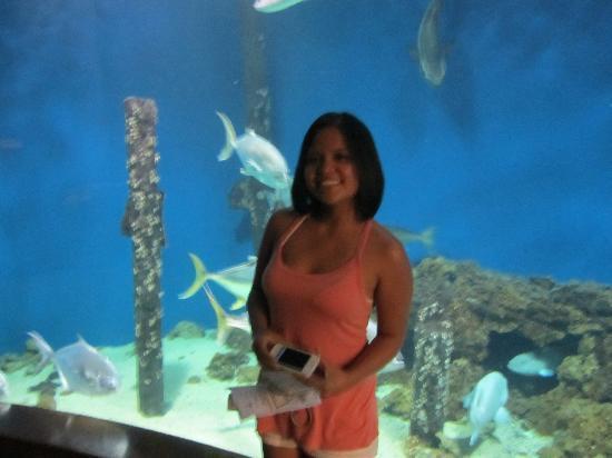Newport News, VA: Aquarium