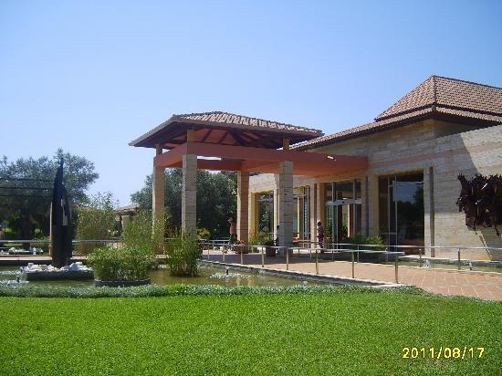 Viva Can Picafort: Hotel garden