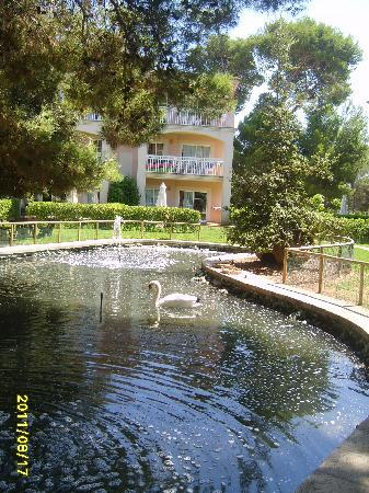Zafiro Can Picafort: Lake