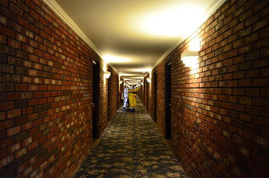 Ramada Lewiston Hotel and Conference Center: Hallway outside of hotel rooms
