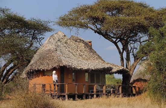 Tawi Lodge: Unsere Hütte