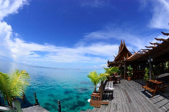 Pulau Mabul, Malasia: セルフダイビングのハウスリーフ