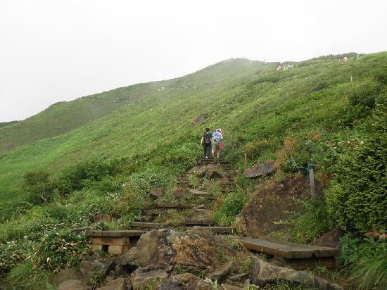 Χακούμπα-μούρα, Ιαπωνία: 自然研究路