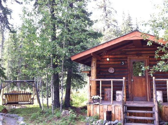 Carlo Creek Lodge: Cabin with rustic swing to watch creek.