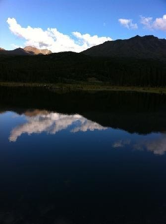 Carlo Creek Lodge: Beaver Pond, evening.