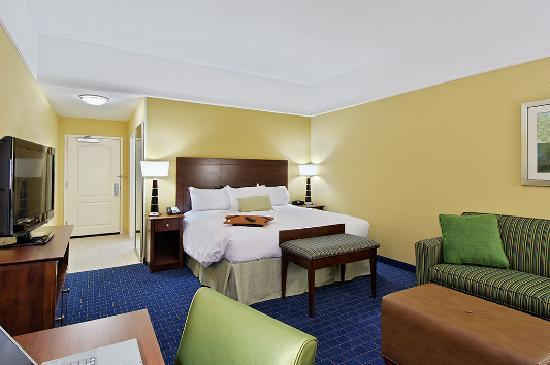 Hampton Inn & Suites Knoxville - Turkey Creek / Farragut: King Guest Room
