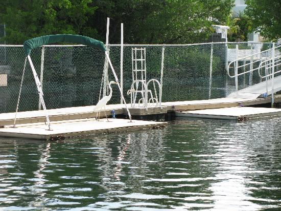 Dolphins Plus - Key Largo: the facility