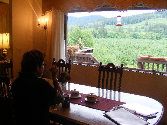 Misty Valley Inn B&B: dining room and view
