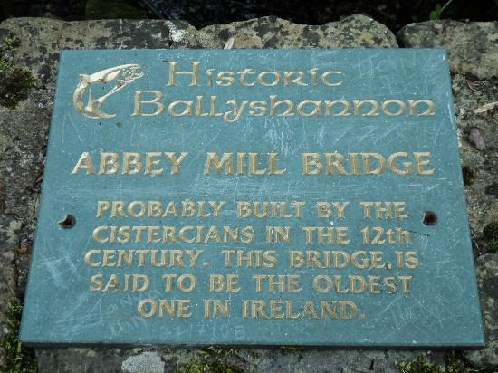 Ballyshannon, ไอร์แลนด์: Said to be the oldest bridge in Ireland