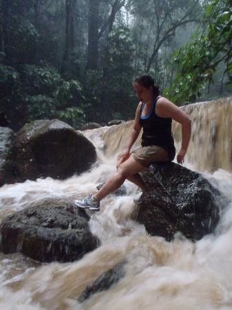 Costa Rica Waterfall Tours: After we decided to go back to the trail.
